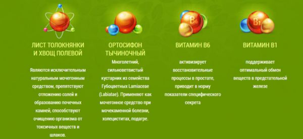 Состав Урофорса