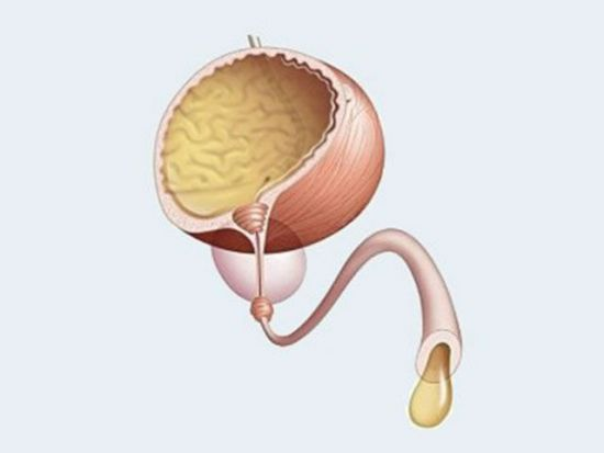 Выделения из уретры
