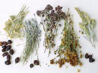 различные травы